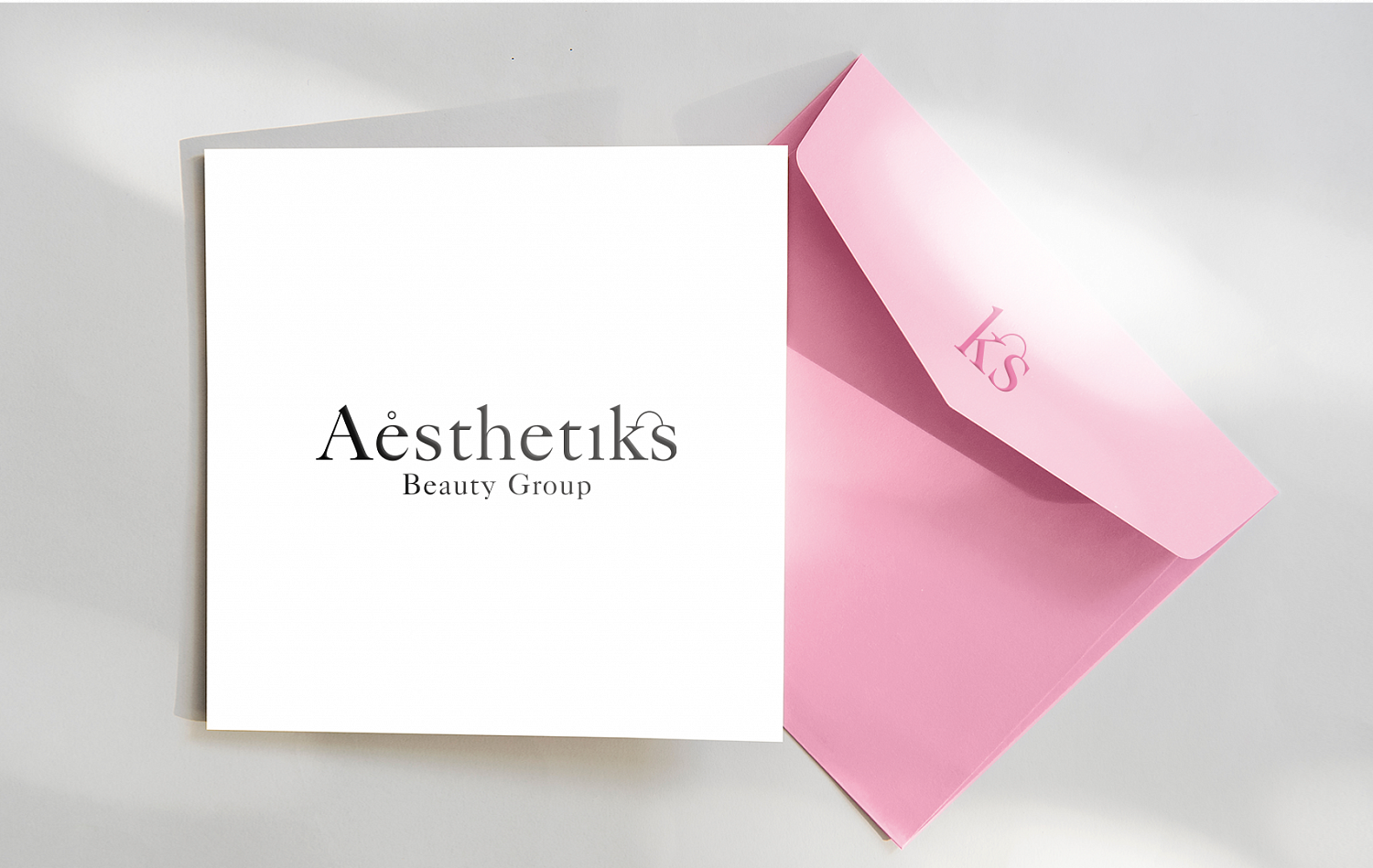 Aesthetiks Beauty Group - Портфолио Depot